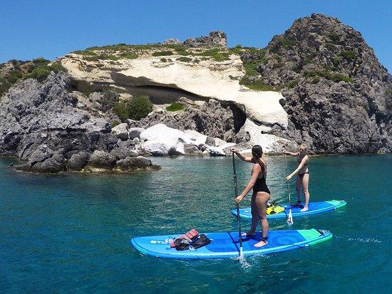Paddle Paradise