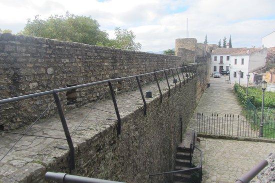 Puerta de Almocabar: Almocabar Walls from up top