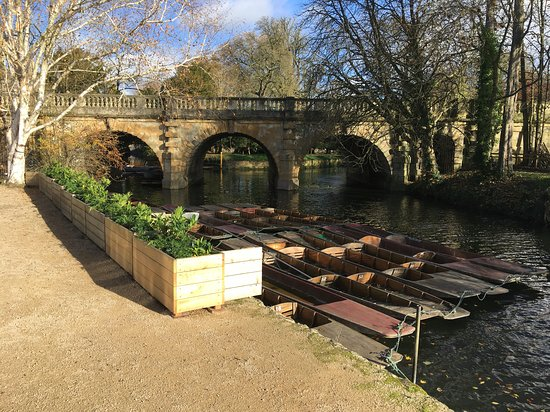 University of Oxford Botanic Garden: riverside setting