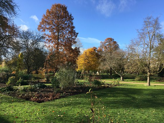 University of Oxford Botanic Garden: Just wonderful