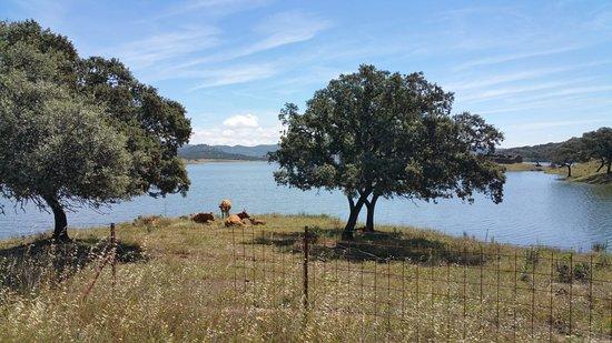 Bilde fra Sierra de Aracena and Picos de Aroche Natural Park