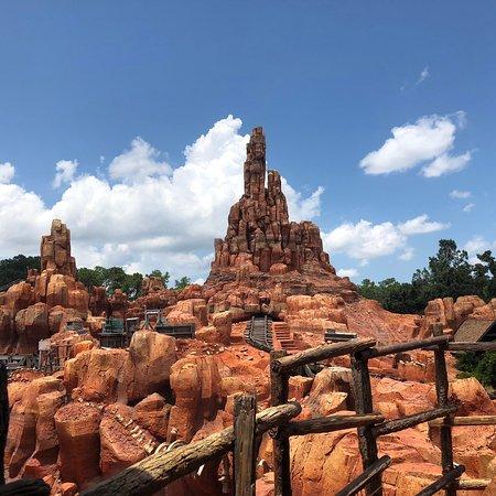 Magic Kingdom-bild
