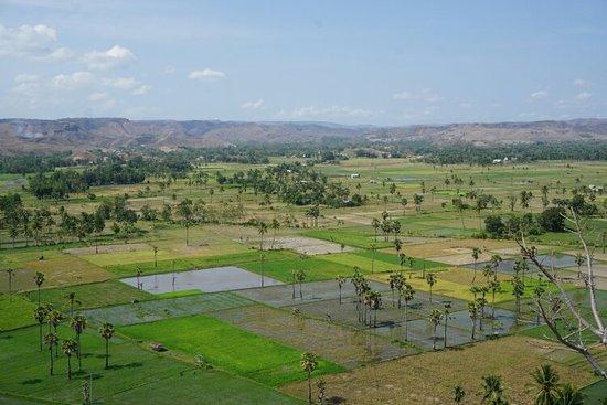 Waingapu Foto