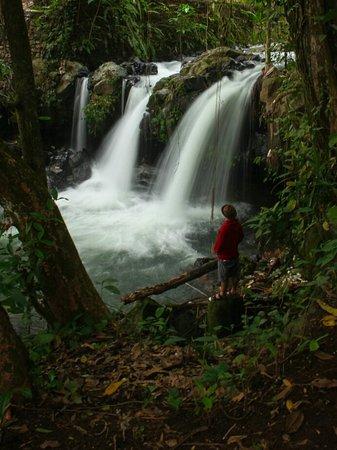 A beautiful waterfall situated only 1 km from Narmada Temple. Tibu Remeneng, Narmada. ©lombokfriendly