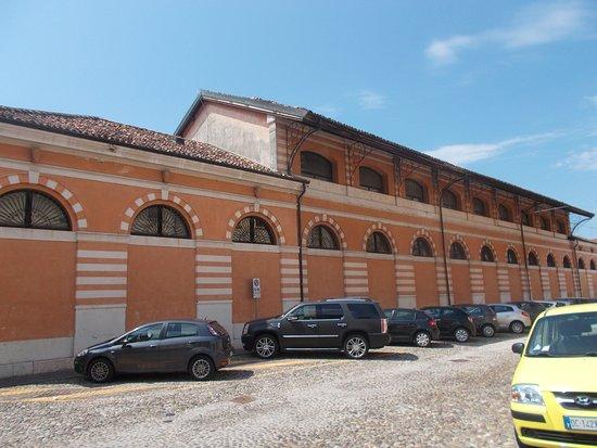 Istituto Mantovano Di Storia Contemporanea
