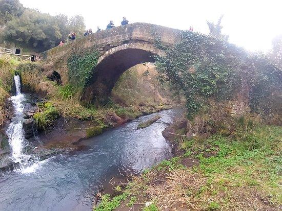 Bilde fra Corchiano