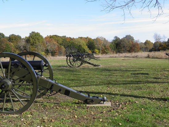 Republic, MO: Battle site cannons