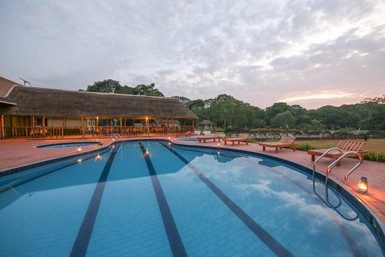 Pool - Picture of Victoria Forest Resort, Bugala Island - Tripadvisor