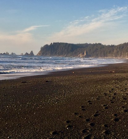 Rialto Beach Olympic National Park 2019 All You Need To Know