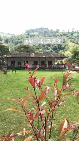 Central America: Finca