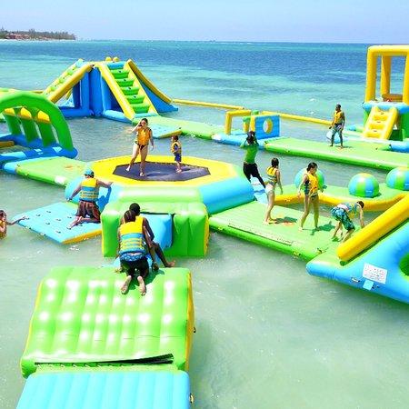 876 Beach Club Tripadvisor