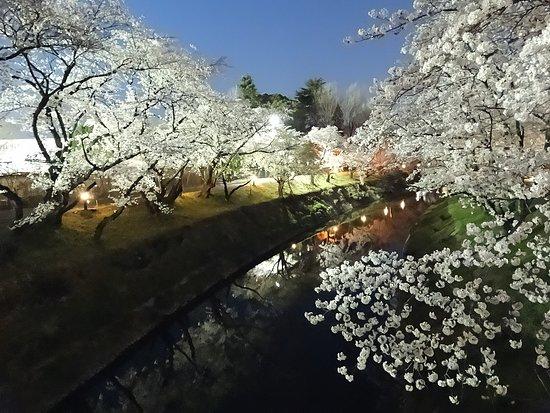 Shinsakai River Tsutsumi