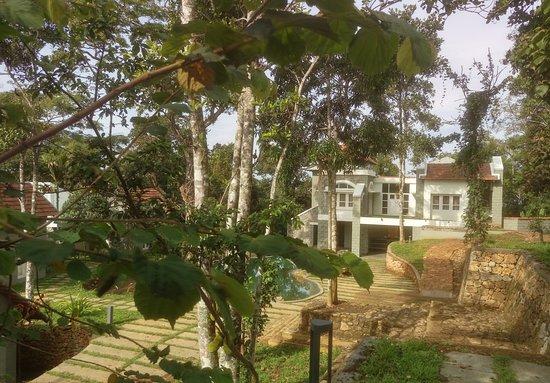 Foto de Idukki District