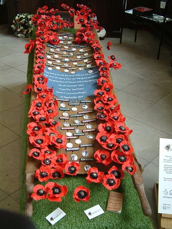 Stunning poppy display