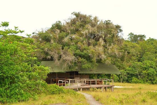 Loango National Park, Γκαμπόν: Our camp at the Park: very clean and convenient enough.