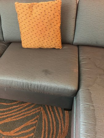 SpringHill Suites Charlotte Airport: This was the couch in our room. Pretty much explains cleanliness of the room.