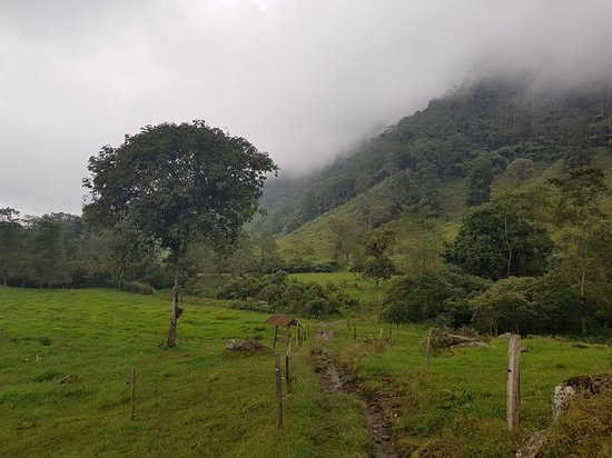 Fusagasuga, Κολομβία: Verde & Agua