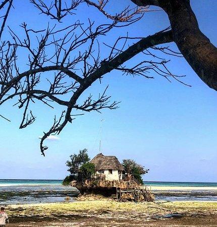 Ходячий замок Хоула в Занзибаре