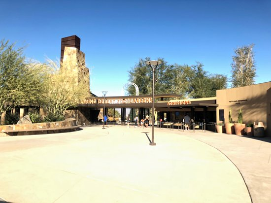 写真The Living Desert Zoo and Gardens枚
