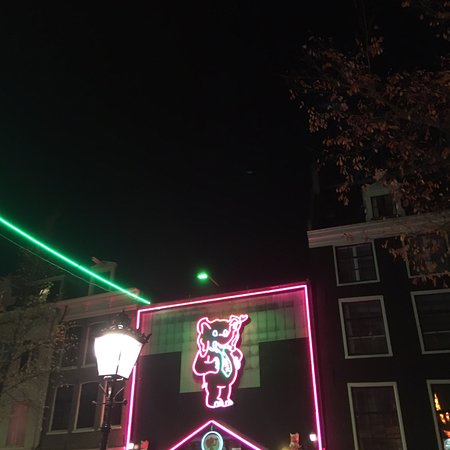 Free live sex feed from amsterdam