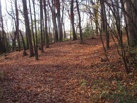 Fort DeRussy - Civil War Fort Remains and Trails in Rock Creek Park