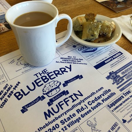 The Blueberry Muffin Photo