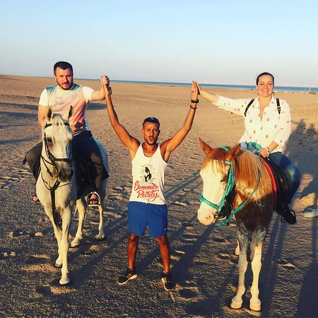 Sahara Stables Sharm