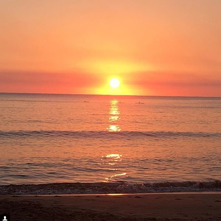 Collaroy Beach Photo