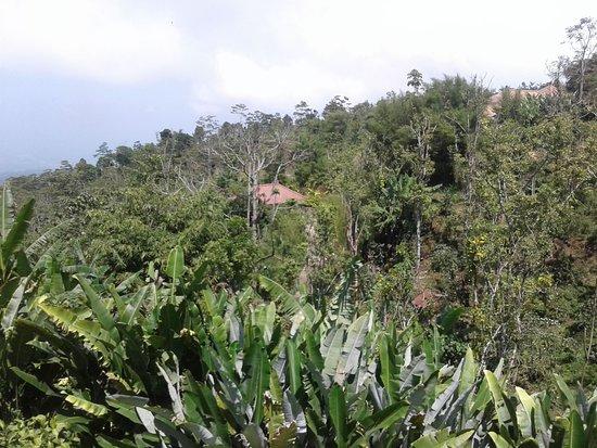 Gobleg ภาพถ่าย