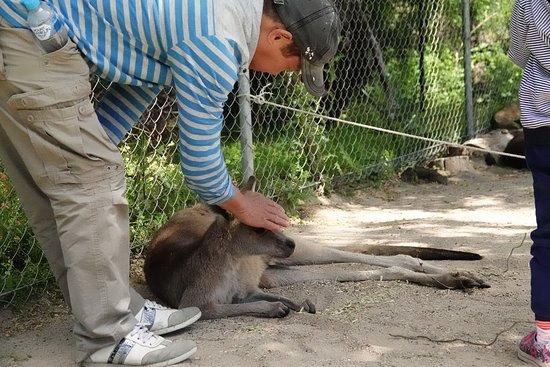 Symbio Wildlife Park ภาพถ่าย