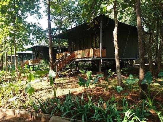 Jungle Villas