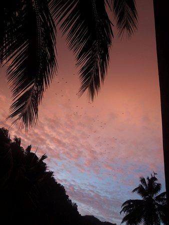 Honeypot Restaurant & Guest House: the sky it dust