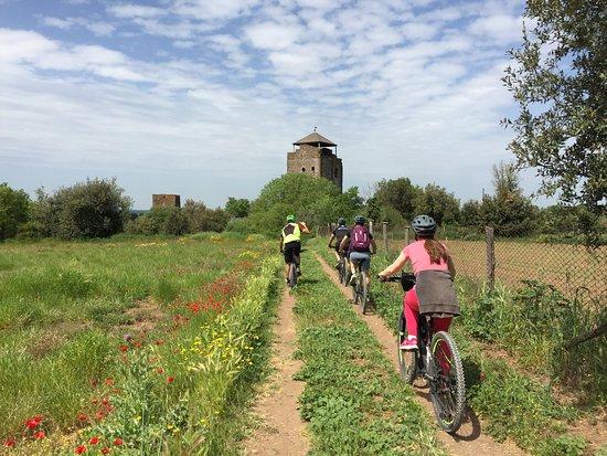Viterbo, إيطاليا: Castel d'Asso