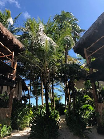 Home away from home in Tulum!
