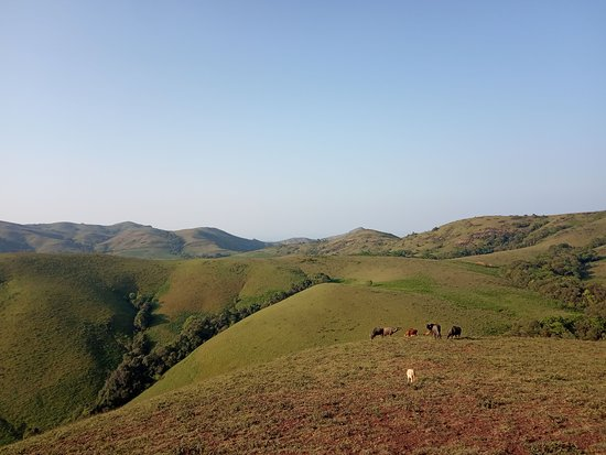 Horanadu, الهند: View from the hill
