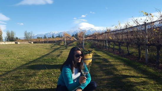 In beautiful Mendoza, ideal place for wine lovers!