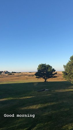 View from the deck in unit #424.