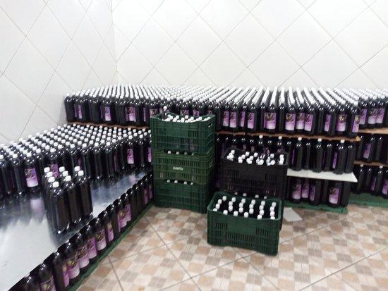 Vinhos Copini