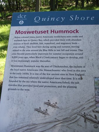 MA - QUINCY - MOSWETUSET HUMMOCK - VIEW OF TRAIL #3 - INFO BOARD CLOSE-UP