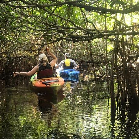 Foto de Everglades Rentals & Eco Adventures