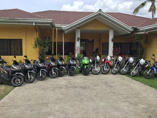 Bohol Motorcycle Rental