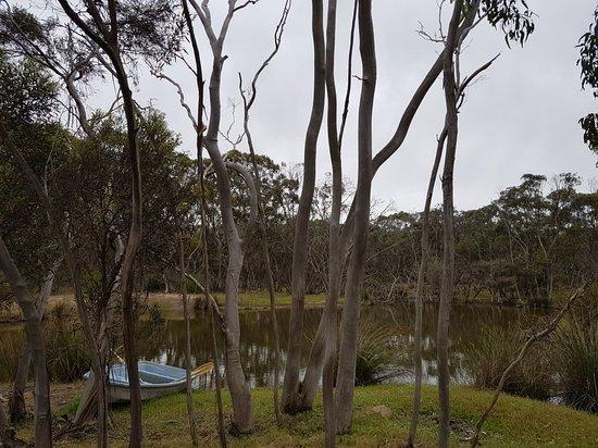 Bilde fra Seddon