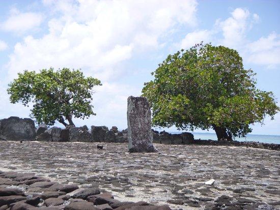 Visite guidé du Marae de Taputapuatea avec Toa Nui Tour... L'histoire oral et écrite vous sera partager ...Raiatea l'Ile sacré la terre des ancêtres vivant dans le triangle polynésien... Haere mai !