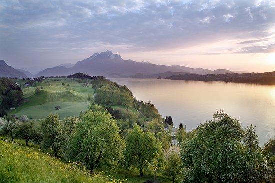 Weggis, Switzerland: getlstd_property_photo
