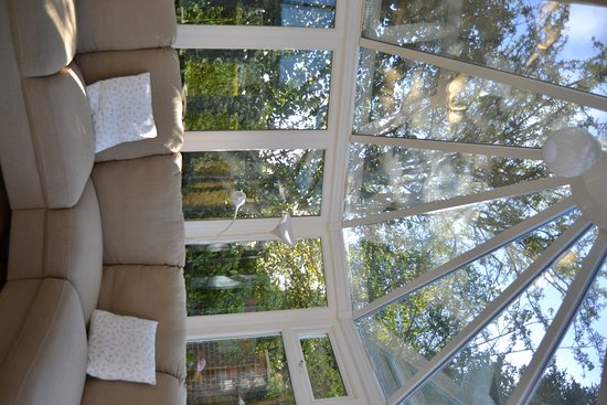 Leafy Suburban Bed and Breakfast: Conservatory