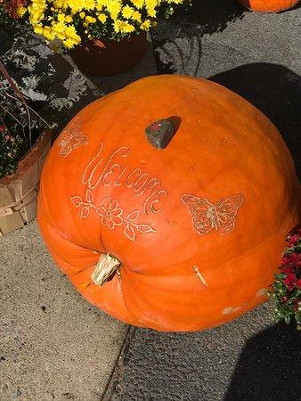 Welcome pumpkin at Milburns