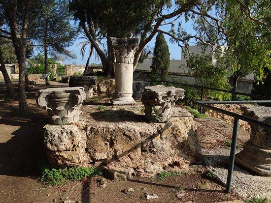 Carthage Museum: Le site extérieur.