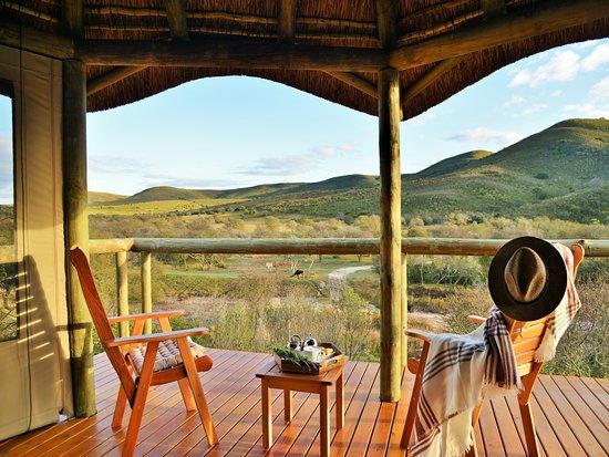Garden Route Safari Camp Campground Reviews Price Comparison Mossel Bay South Africa Tripadvisor