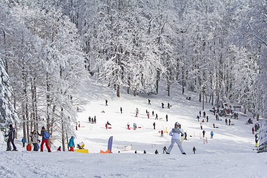 Medvednica mountain (Sljeme): It started snowing in Croatia today - that means ski season is soon upon us!