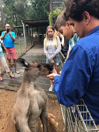 Australian Connection Travel Company (ACTC) Photo